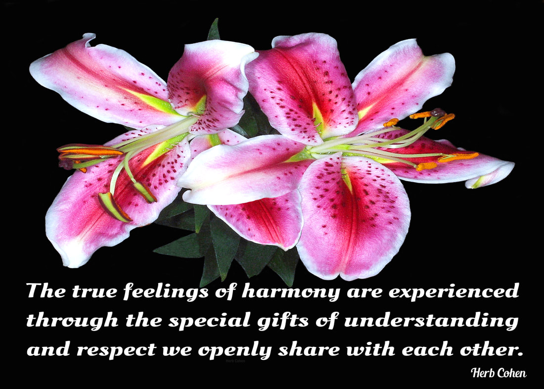 The true feelings of harmony are experienced through the special gifts of understanding and respect we openly share with each other Monument of Empowerment is our daily reminder that it's our power of choice that creates the positive changes we desire in our lives  www.choiceofdirection.com we may not be able to control every situation in our life, but we can choose to control our attitude and actions towards those situations our daily choices that create our positive changes everyone has a choice of direction for it's the power of our positive feelings that inspires our passion and determination towards achieving the life we truly desire monument of empowerment life is a series of choices that provides us with daily opportunities to unite with others and create positive environments for Happiness, Success, Love, Harmony, and Peace in our world for ourselves and others to enjoy Success can only be achieved when our inspiration and determination towards achieving the reward is stronger than our fears of failure choices everyone has a choice of direction for it's our passion and determination that guides us and inspires us towards the positive life we truly desire choosing to create feelings of positivity in our world our life is a series of choices that provides us with daily opportunities to unite with others towards creating positive environments of happiness success love harmony peace our world for all to enjoy our power  choice everyone choice of direction for it's the strength of our Positivity that overpowers the pain of negativity power of choice montage we are all unique and special individuals who deserve to experience the riches of happiness success love harmony and peace in our lives we may not be able to control every situation in our life but we can choose to control our attitude and actions towards those situations everyone universe of importance choice of direction we may not be able to control every situation in our life but we can choose to control our attitude and actions towards those situations It's our power of choice that creates the beauty of new and exciting changes in our lives success can only be achieved when our inspiration and determination towards achieving the reward is stronger than our fears of failure