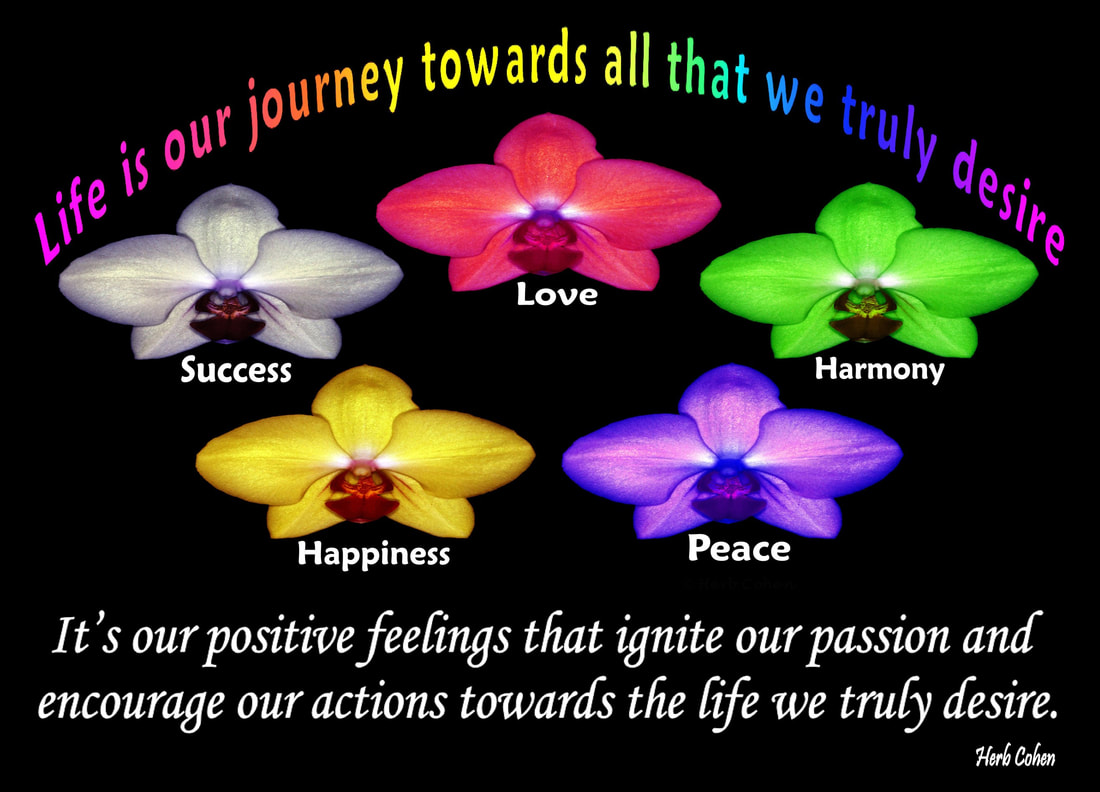 Life is our journey towards all that we truly desire.  It's our positive feelings that ignite our passion and encourage our actions towards the life we truly desire  The Universe of Importance  Uniting to create atmospheres of empowerment towards achieving the serenity of peace for all   The 'Universe of Importance' is a series of building blocks that inspires our climb up life's mountain towards achieving the positive energy of happiness and then scale higher and higher until we finally reach the glorious summit of the serenity of peace