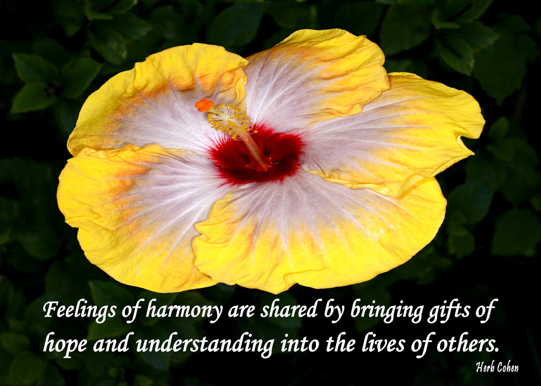 Feelings of harmony are shared by bringing gifts of hope and understanding into the lives of others