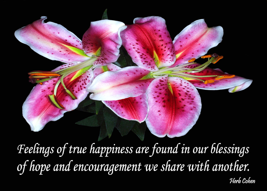 Feelings of happiness create our positive energy and inspiration towards achieving the life we truly desire