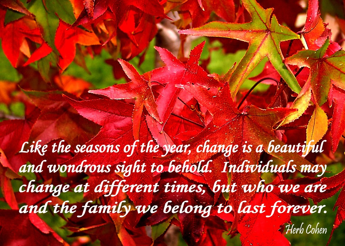 Like the seasons of the year, change is a beautiful and wondrous sight to behold.  Individuals may change at different times, but who we are and the family we belong to last forever  The Universe of Importance  Uniting to create atmospheres of empowerment towards achieving the serenity of peace for all   The 'Universe of Importance' is a series of building blocks that inspires our climb up life's mountain towards achieving the positive energy of happiness and then scale higher and higher until we finally reach the glorious summit of the serenity of peace.