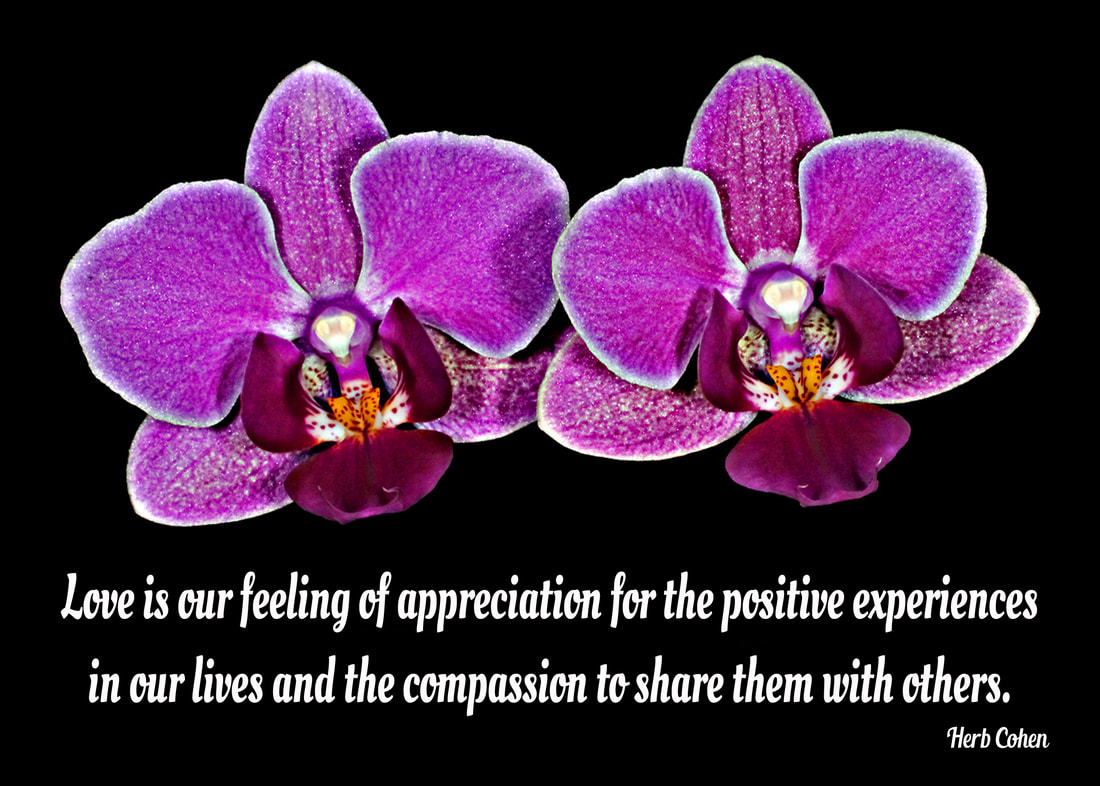 Our journey for LOVE and self-respect are achieved by appreciating our positive qualities and compassionately sharing our gifts of kindness and understanding with others Love is our feeling of appreciation for the positive experiences in our lives and the compassion to share them with others choose achieve feelings HAPPINESS appreciating the positive experiences share others Our journey Happiness create flow positive energy opens heart positive experiences blessing  hope encouragement choose achieve feelings SUCCESS focusing outcomes benefit ourselves journey SUCCESS achieved monetary wealth volumes possessions found gifts compassion and encouragement we freely give to others We can choose to achieve feelings of LOVE by focusing positive qualities journey LOVE self-respect achieved appreciating positive qualities and compassionately sharing our gifts of kindness and understanding with others We can choose achieve feelings HARMONY creating relationships share positive outlook  journey HARMONY achieved through positive feeling receive engaging relationships openly share  gifts compassion kindness choose to achieve feelings PEACE appreciating blessings we have experienced our lives journey serenity PEACE  achieved focusing blessings have experienced while releasing pain negativity, stress, and frustration lives