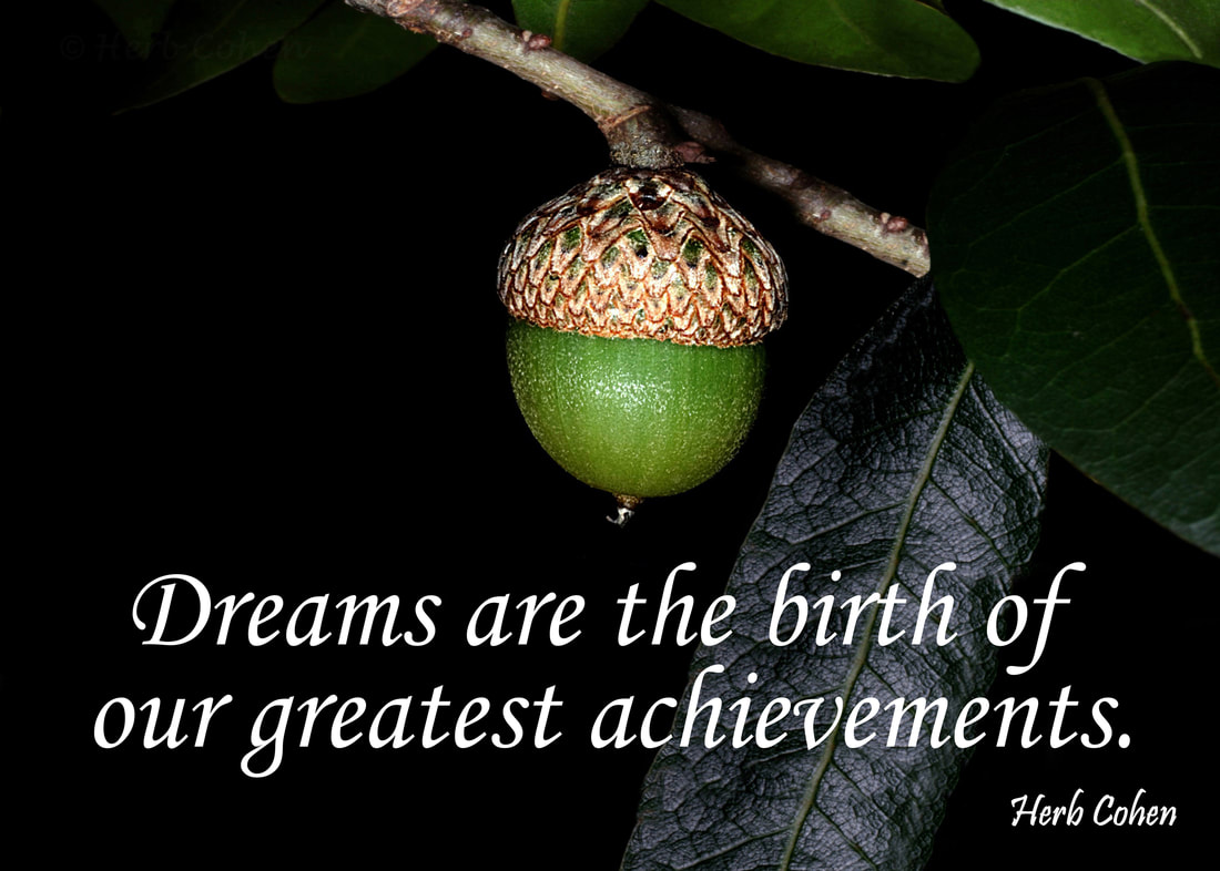 Dreams are the birth of our greatest achievements