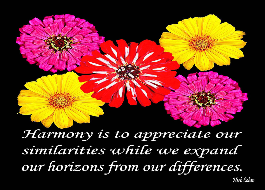 Harmony creates positive relationships that help support each other on our climb towards the serenity of peace