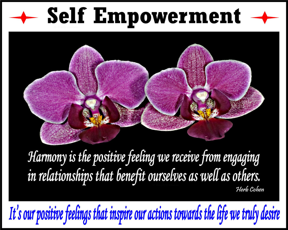 Harmony is the positive feeling we receive from engaging in relationships that benefit ourselves as well as others.  Positive relationships eliminate conflicts by creating win-win opportunities for all