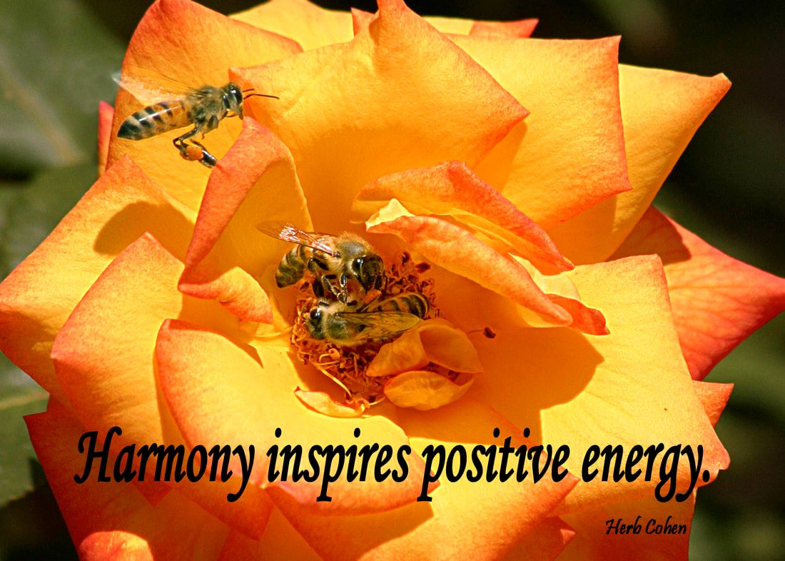 Feelings of harmony are shared by bringing gifts of hope and understanding into the lives of others The Monument of Gratitude is our inspirational guide that teaches us to appreciate and celebrate our positive experiences and to openly share them with others The Monument of Gratitude is our daily reminder that we are all unique and special individuals who deserve the freedom to experience the positive feelings of happiness, success, love, harmony, and peace The Universe of Importance Uniting to create environments of empowerment to strengthen our feelings for Happiness, Success, Love, Harmony, and Peace Our life's journey is a series of choices that gives us daily opportunities to create environments of Happiness, Success, Love, Harmony, and Peace in our world The Universe of Importance is about upstanders uniting to create positive changes in our world that focus on helping others while breaking-down the barriers of those who are fixated on highlighting our differences We are all unique and special individuals who deserve to experience the positive feelings of happiness, success, love, harmony and especially, the serenity of peace Our journey towards the serenity of peace is a reflection of our openness to totally appreciate the blessings of happiness, success, love, and harmony in our lives Monument of Gratitude  Our life is a journey towards the serenity of peace for it's our passion and determination that will guide us and inspire us towards the life we truly desire It's our positive feelings that inspire our actions towards the life we truly desire
