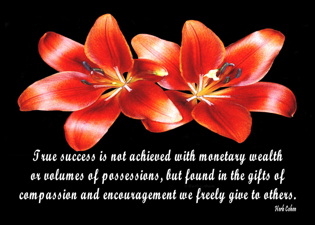 True success is not achieved with monetary wealth or volumes of possessions, but found in the gifts of compassion and encouragement we freely give to others