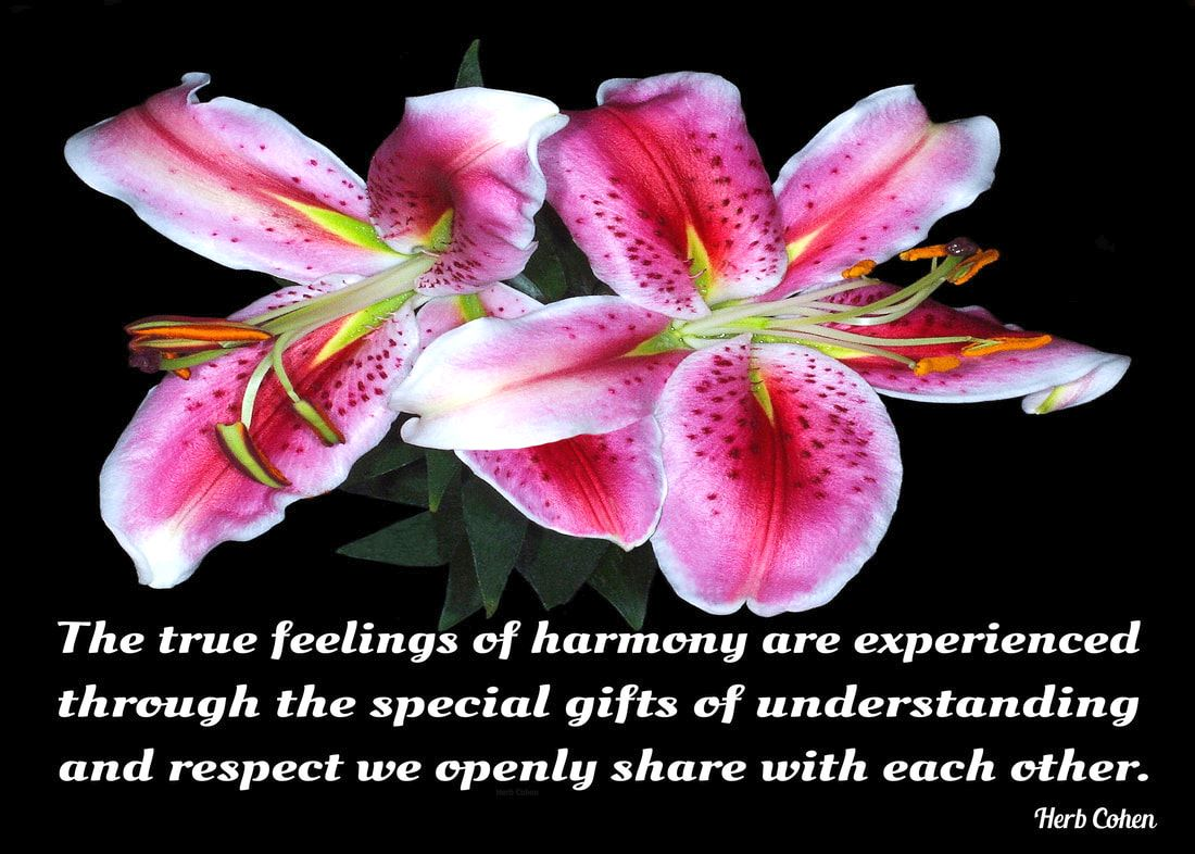 The true feelings of harmony are experienced through the special gifts of understanding and respect we openly share with each other