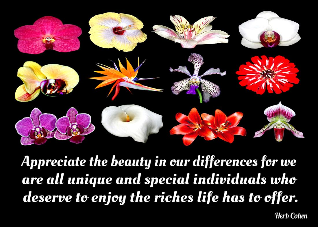 Appreciate the beauty in our differences for we are all unique and special individuals who deserve to enjoy the riches life has to offer