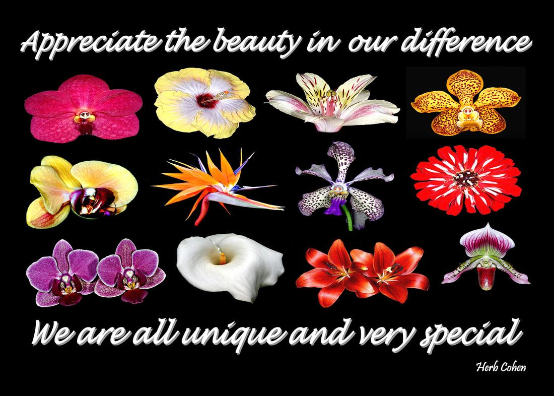 Appreciate the beauty in our difference for we are all unique and very special